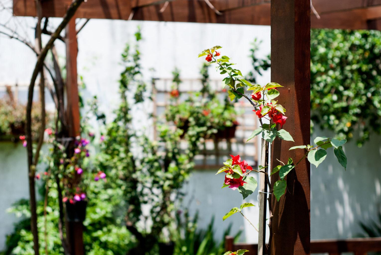 Jardim casa de repouso morada primavera
