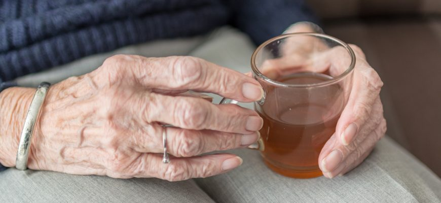 hábitos alimentares idoso