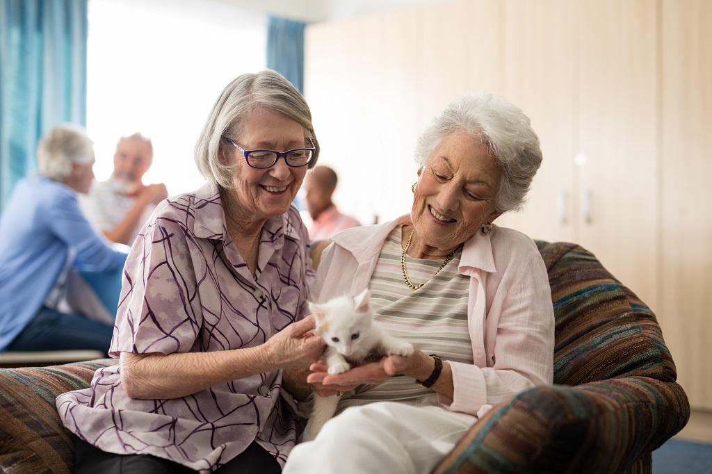 dupla de idosas segurando um filhote de gato | Morada Primavera